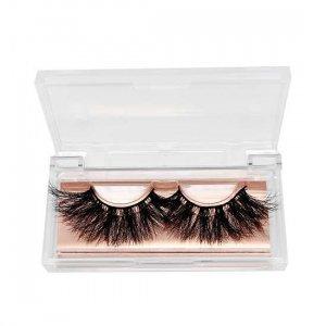 Acrylic lashes cases
